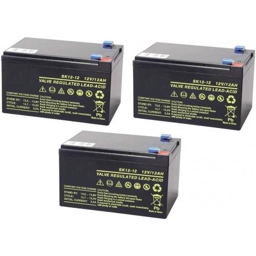 Kit de 3 Batteries Vélo Electrique 36 V